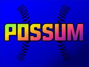 Possum Baseball & Softball